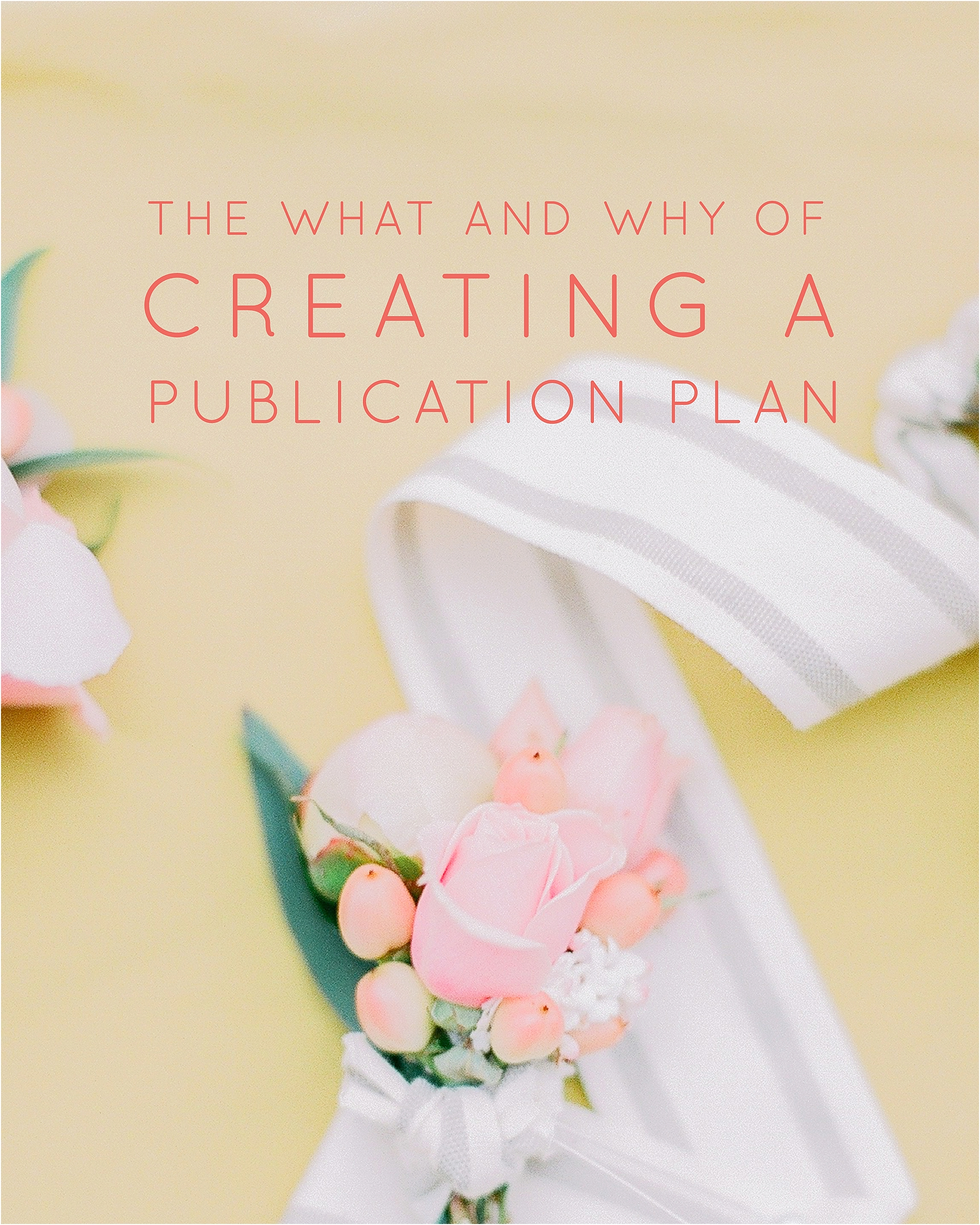The What and Why of Creating a Publication Plan_0004