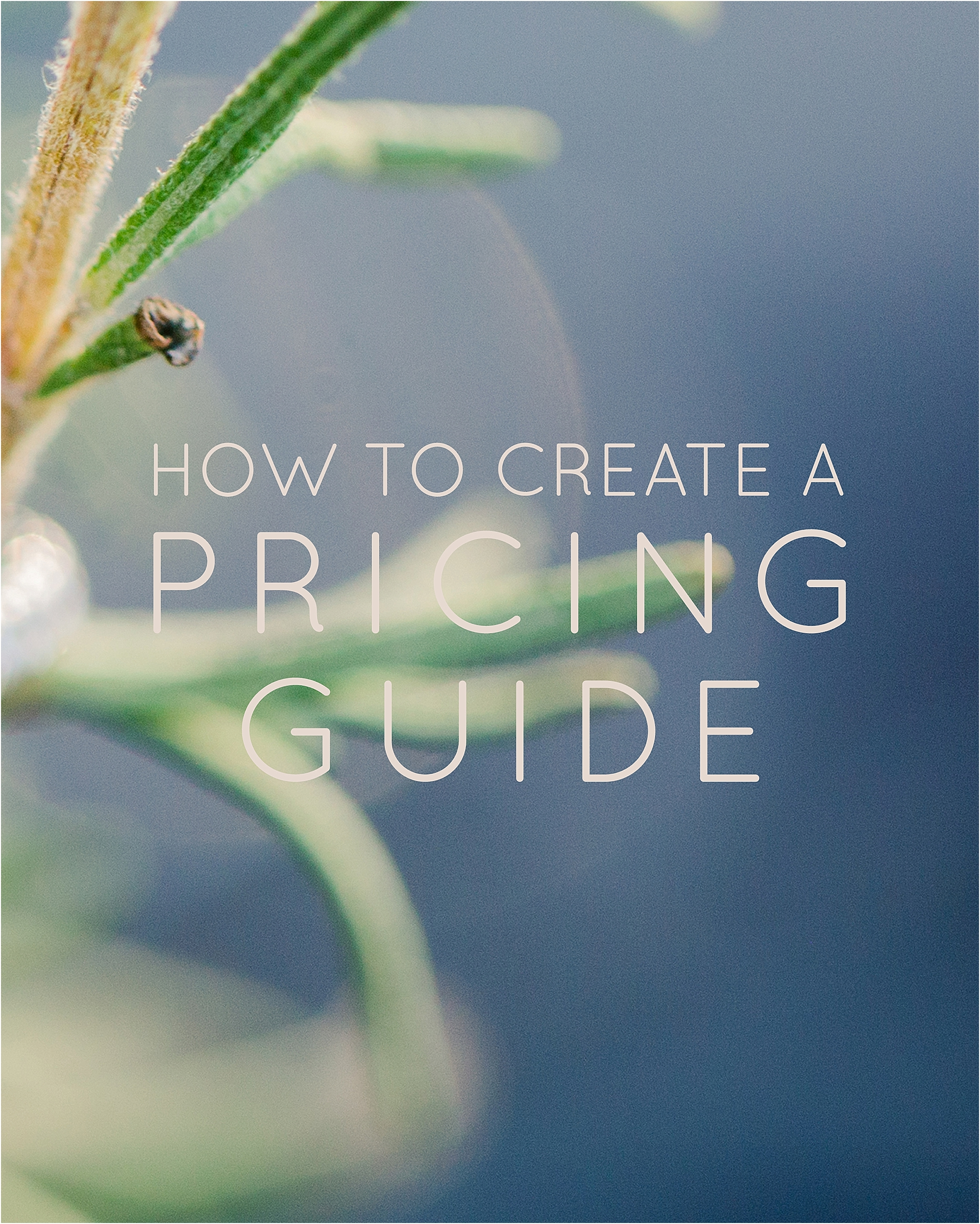 How To Create a Pricing Guide - The Jordan Brittley Blog