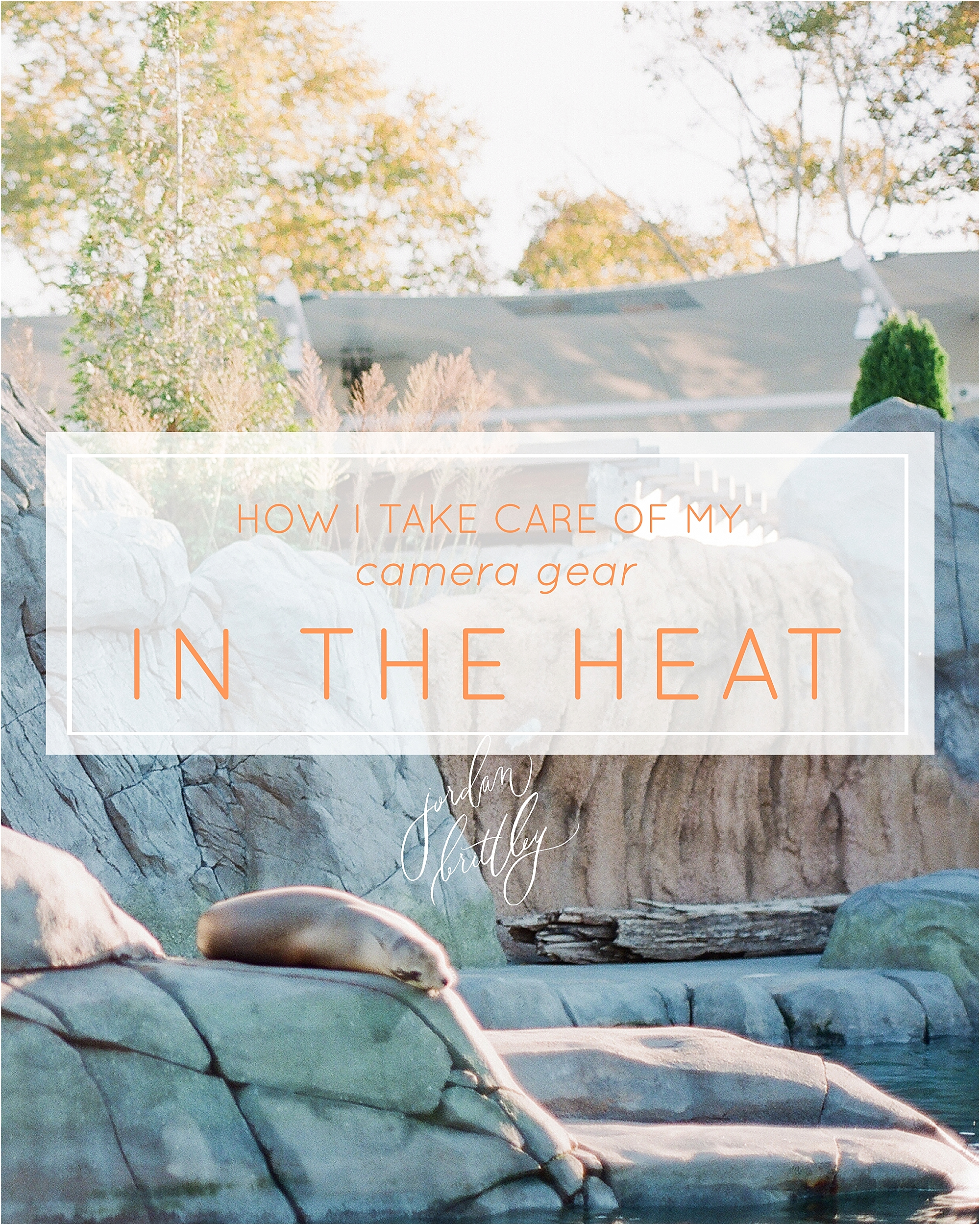 How to Take Care of Your Camera Gear in the Heat - The Jordan Brittley Blog