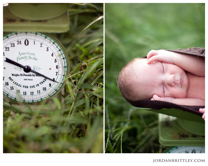 Newborn Photography, Newborn Photographer, St Louis Newborn Photographer, Missouri Newborn Photographer