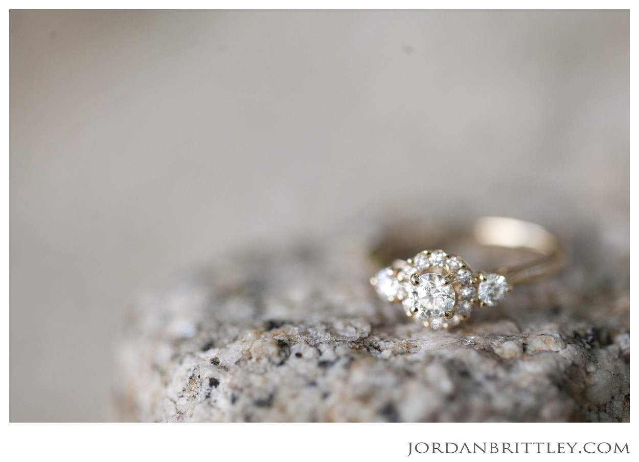 Missouri Engagement, Botanical Gardens Proposal, Engagement, Engagement Photographer, Wedding Photographer, St Louis Wedding Photographer, International Wedding Photographer, Missouri Wedding Photographer, Garden Engagement, Engagement Ring, Wedding Ring, Botanical Gardens