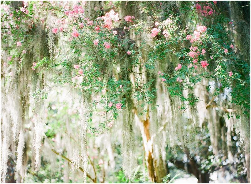 Savannah Georgia Anniversary by Jordan Brittley