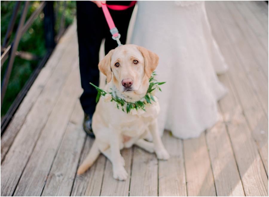 St Louis Coronado Wedding from Jordan Brittley