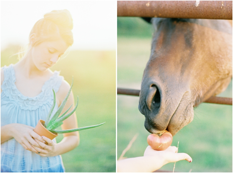 girl holding cactus and feeding a horse photography by jordan brittley_006