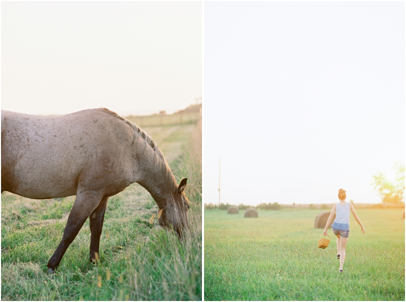 horse and girl skipping through a field photography by jordan brittley_008