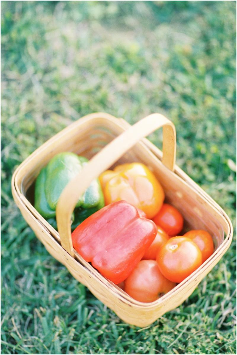 basket of vegetables photography by jordan brittley_011