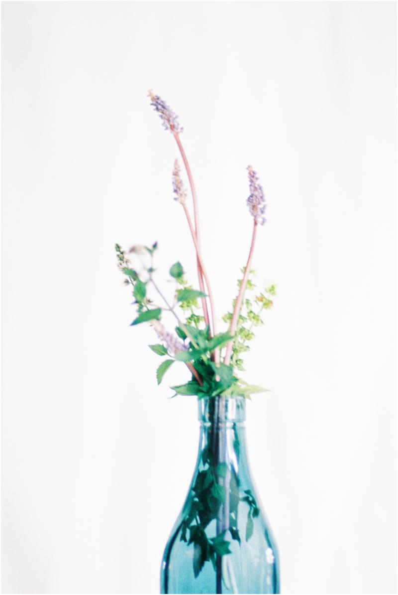 lavender oregano and mint arrangement by jordan brittley photography