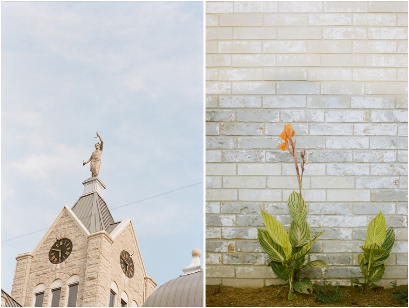 courthouse and blooming flower - photography by jordan brittley