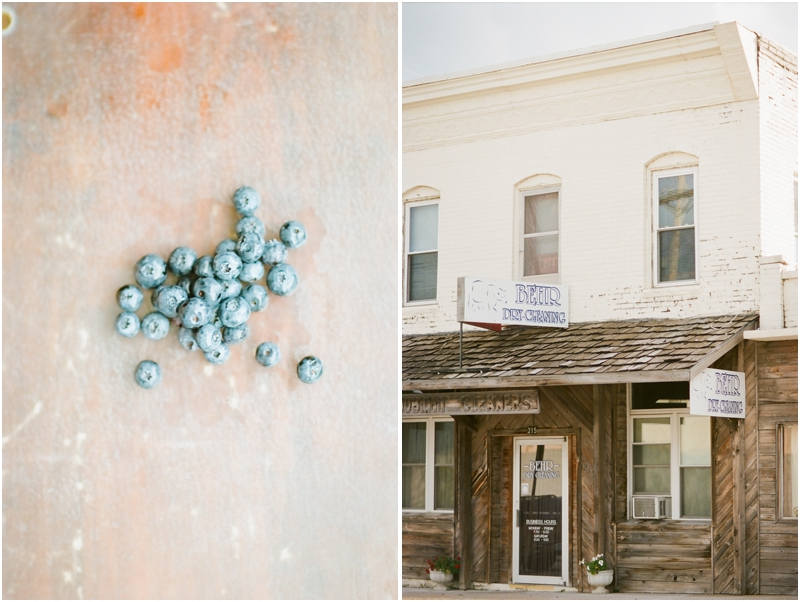 blueberries and dry cleaning bolivar mo - photography by jordanbrittley.com