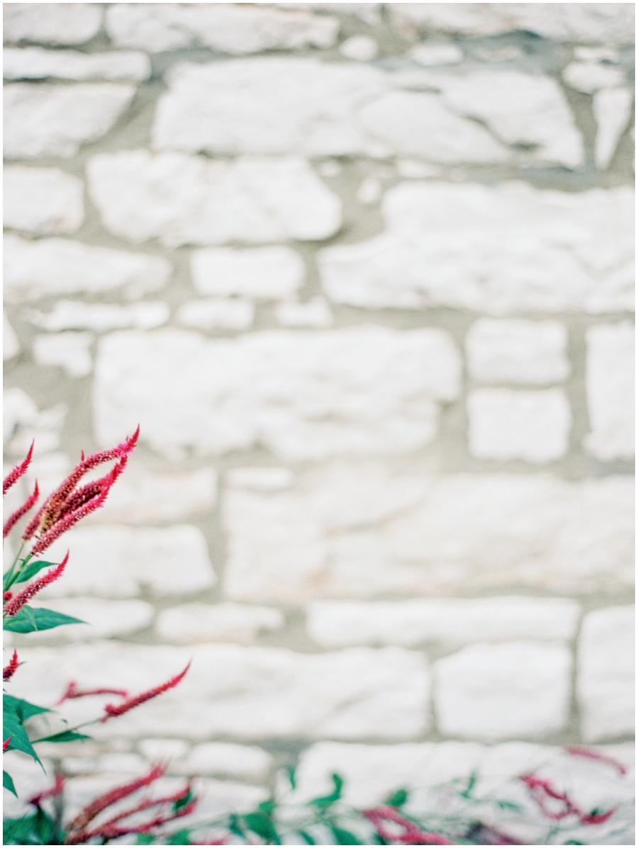 St. Louis Missouri Outdoor Wedding Photos | Elegant Photographer