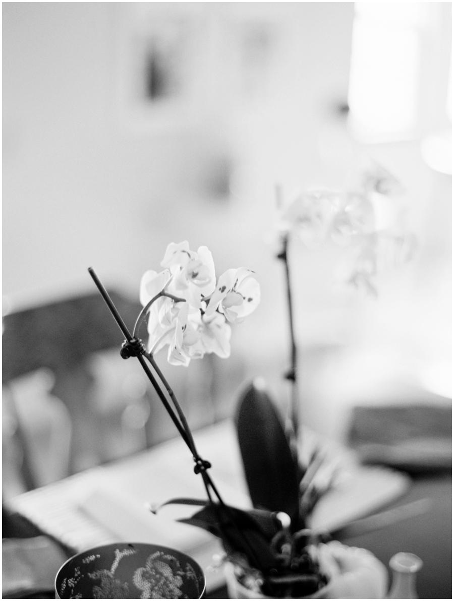St Louis Fine Art Photographer - Jordan Brittley
