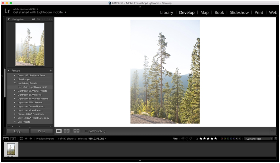Get started with Lightroom Editing - Light and Airy Editing Tips_0018.jpg
