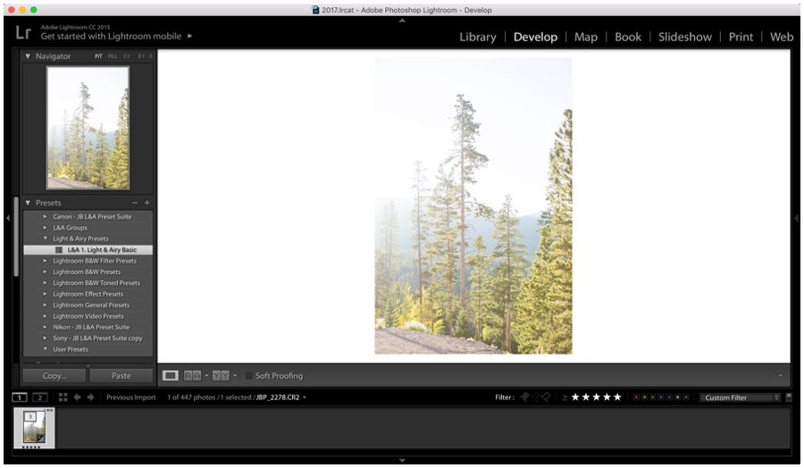 Get started with Lightroom Editing - Light and Airy Editing Tips_0019.jpg