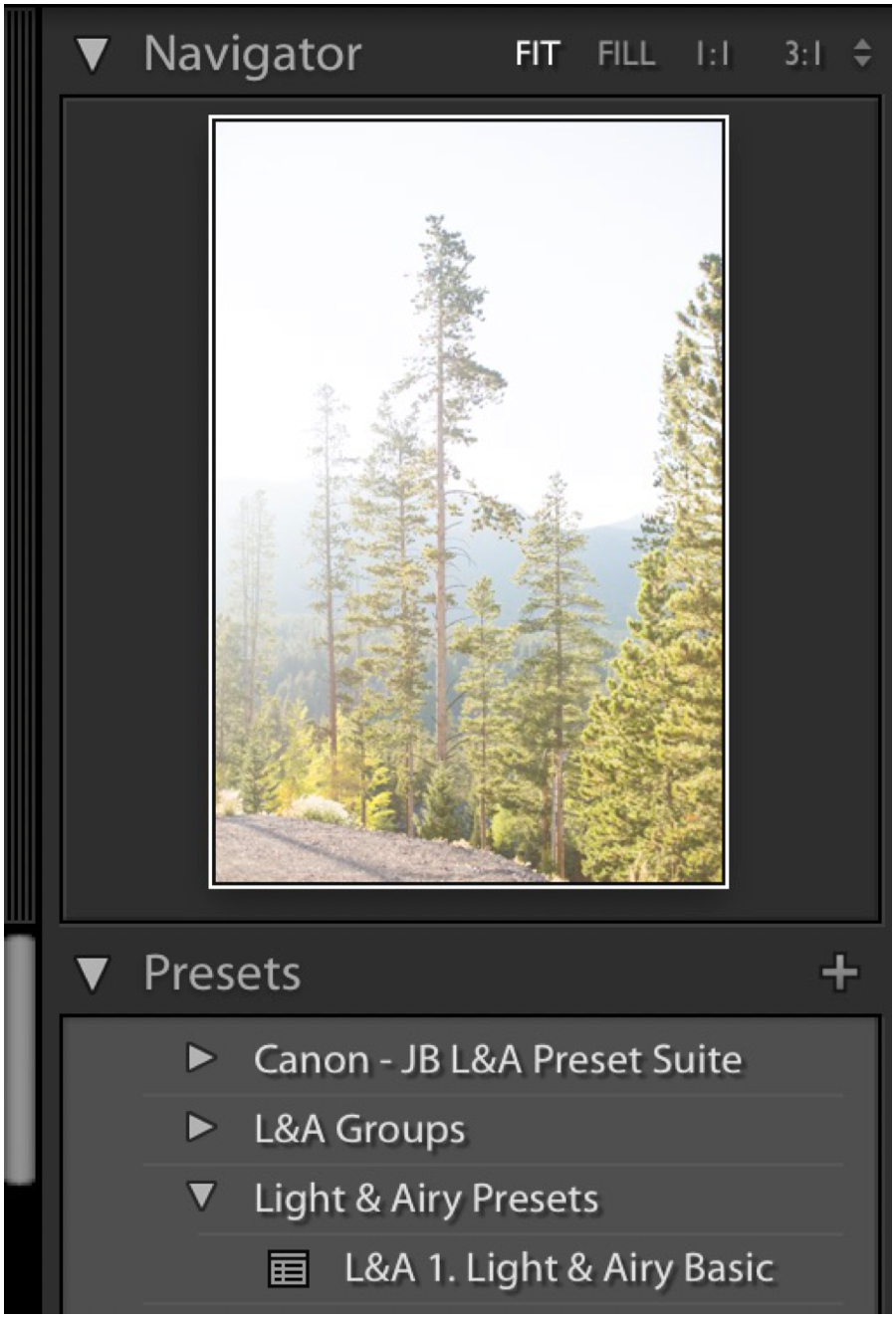 Get started with Lightroom Editing - Light and Airy Editing Tips_0020.jpg