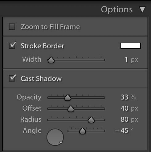 Lightroom Slideshow Module — Options Panel