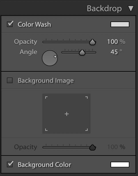 Lightroom Slideshow Module — Backdrop Panel