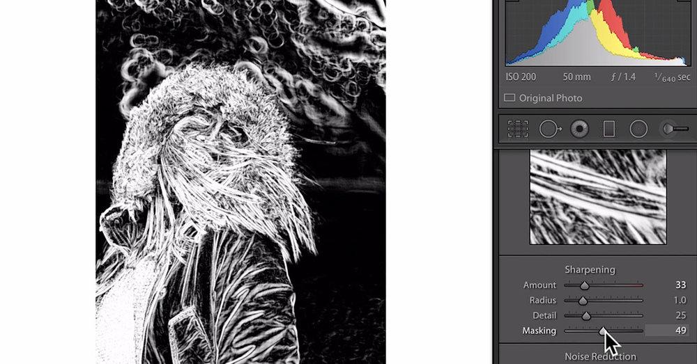 Lightroom detail panel - sharpening.jpg