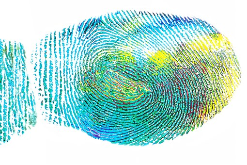 unique fingerprint.jpg