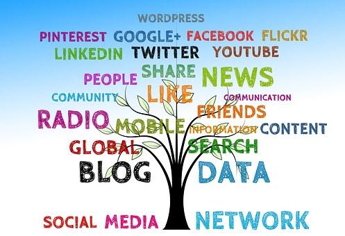 social media options tree