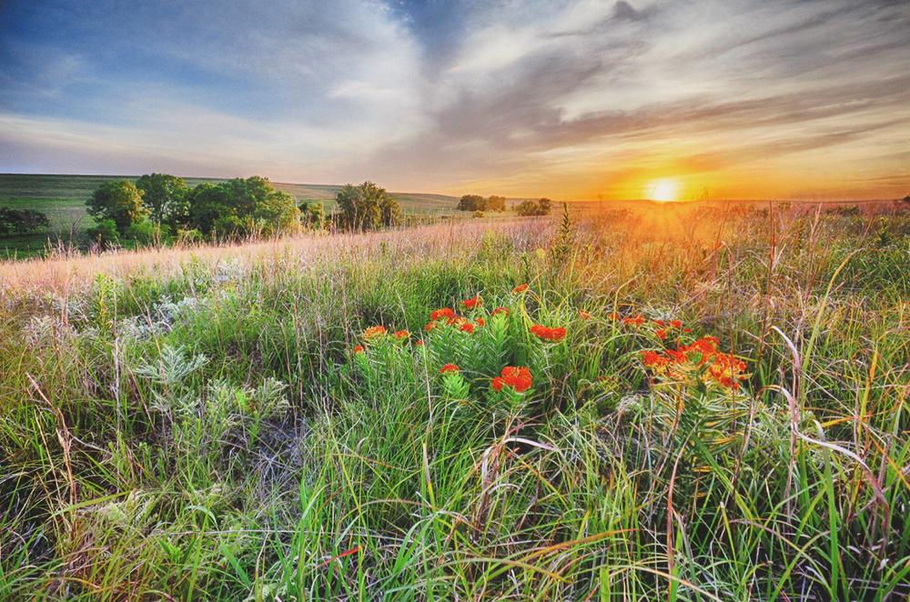 "Ken West ""Flint Hills Landscape"""
