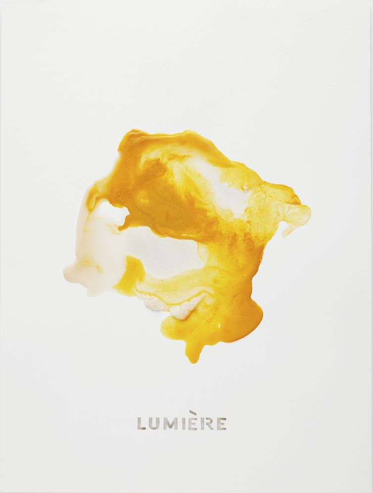 "LUMIERE   Beeswax and mixed media on paper  20"" x 15""  2017  Referencing: Louis Lumiere (1864-1948); One of the Lumiere brothers, French filmmakers and pioneers of early cinema."