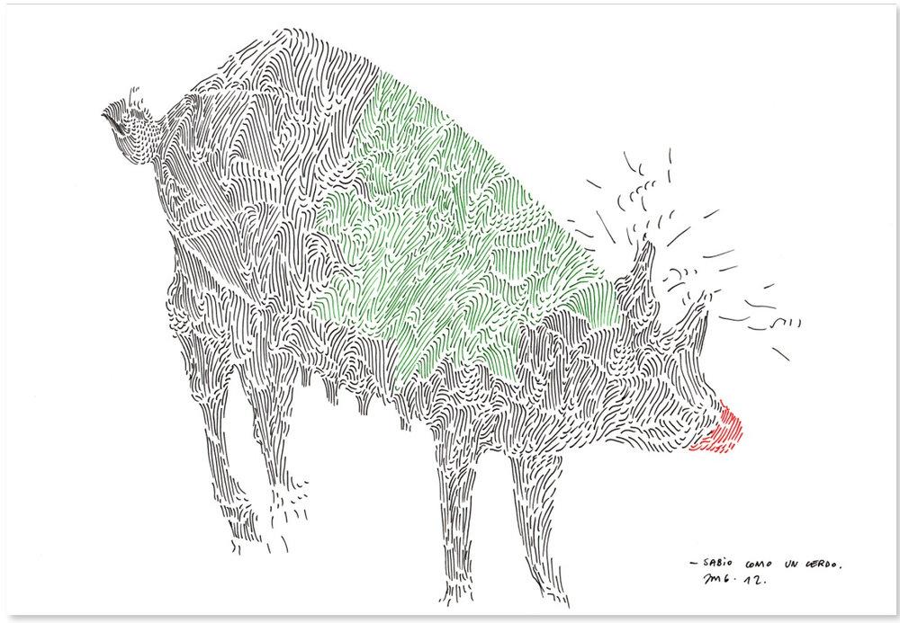 """Sabio como un cerdo   Ink on paper  12"""" x 16.5""""  2012"""