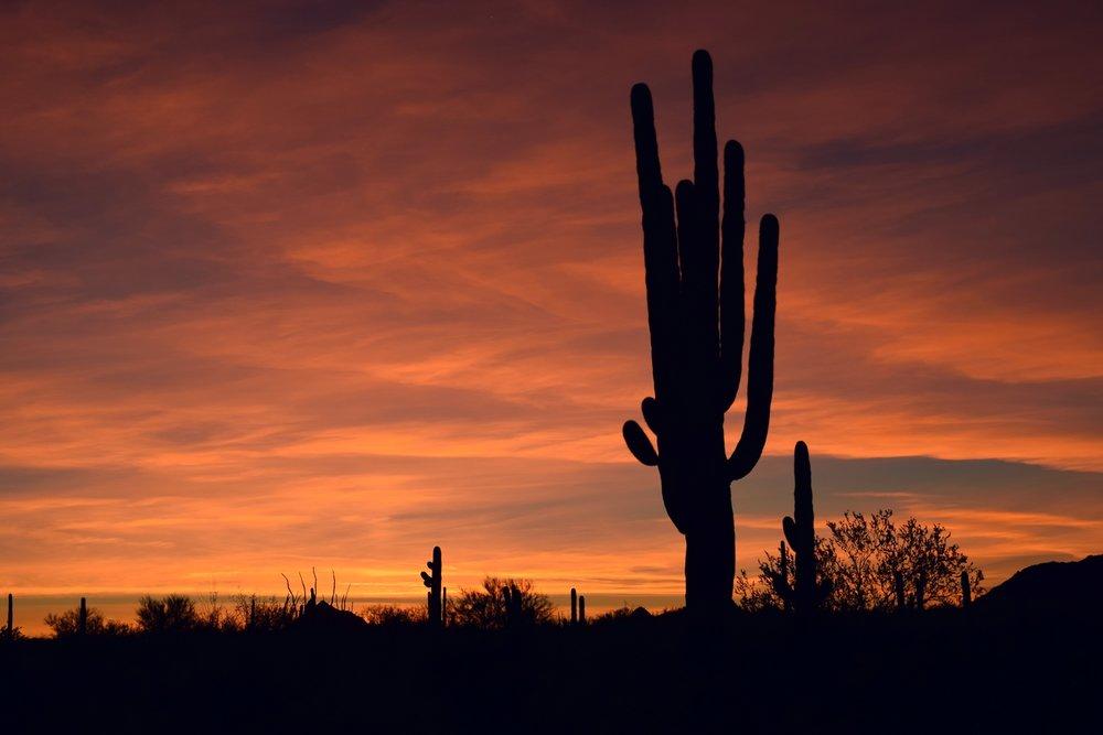 Arizona_0298.jpg