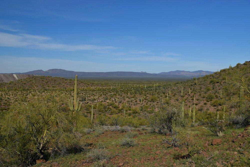 Arizona_0262.jpg