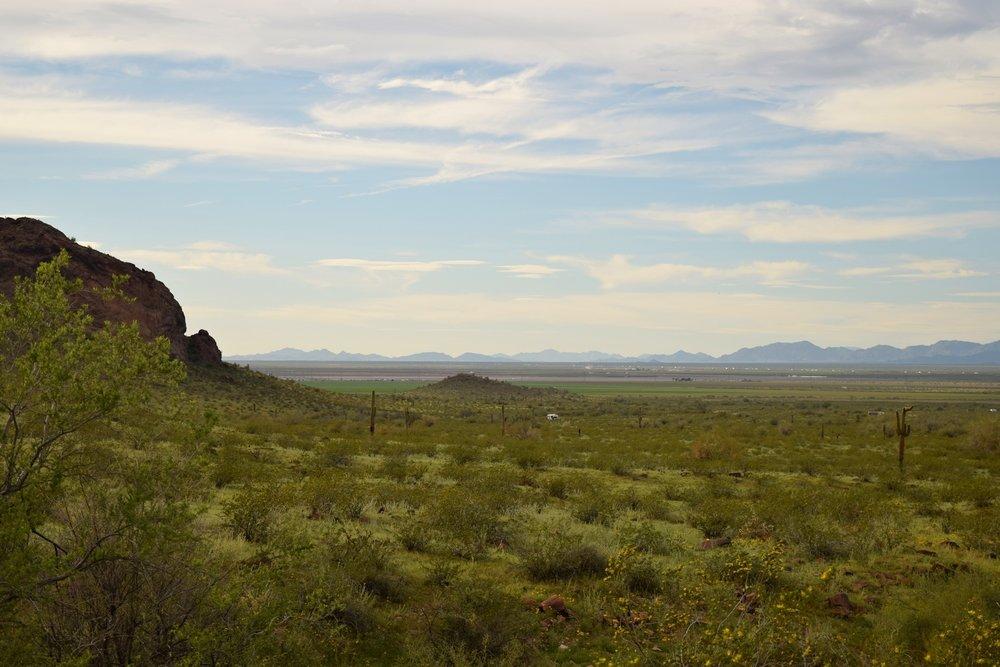 Arizona_0360.jpg