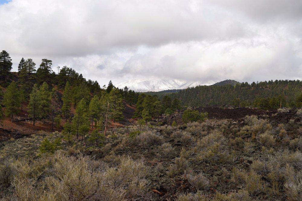 Arizona_0522.jpg