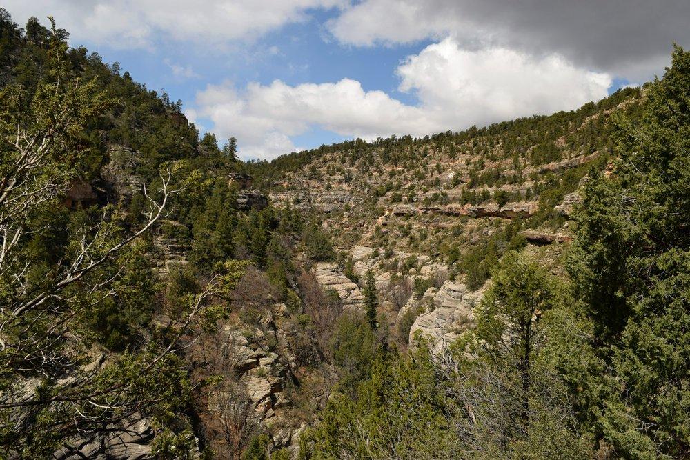 Arizona_0561.jpg