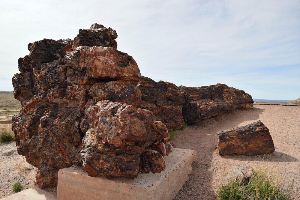 Arizona_0619.jpg