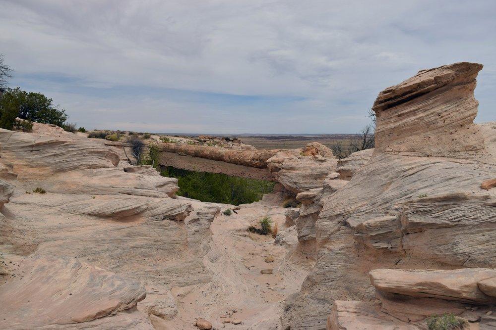Arizona_0681.jpg