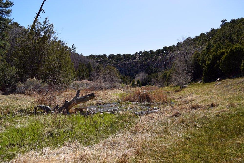 New_Mexico_0453.jpg