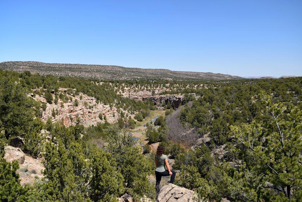 New_Mexico_0519.jpg