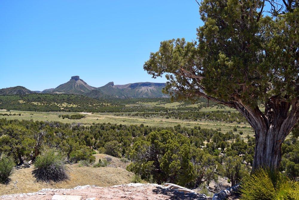 Colorado_0065.jpg