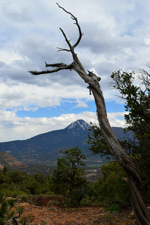 Colorado_0117.jpg
