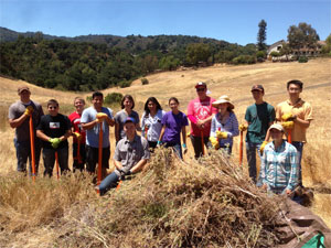 Removing invasive species from the Byrne Preserve grassland