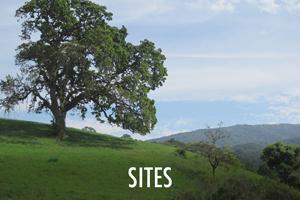 sites.jpg