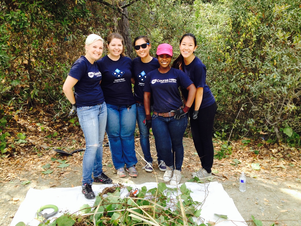 Volunteers from SAP help remove invasive ivy