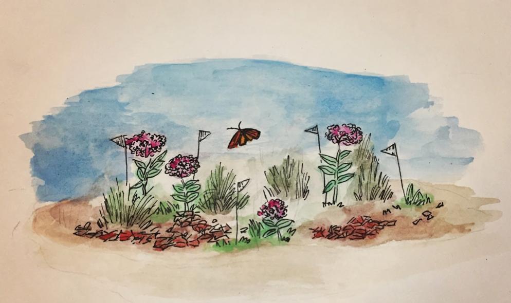 A native landscape drawn by Natalie