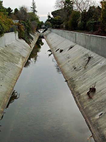 Similar to many of our local creeks, parts of Matadero Creek in Palo Alto have been channelized
