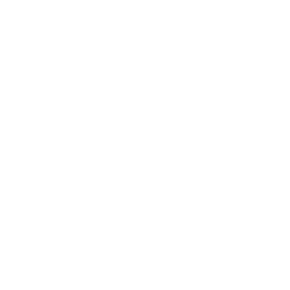 Knights Logo White Transparent.png