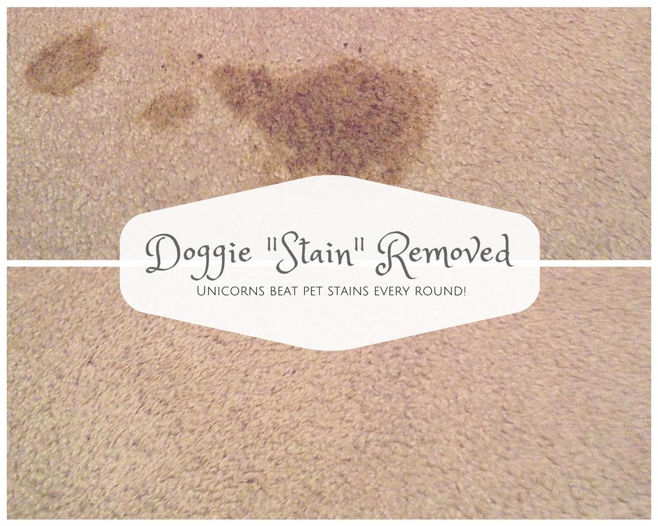 removestainfromcarpet