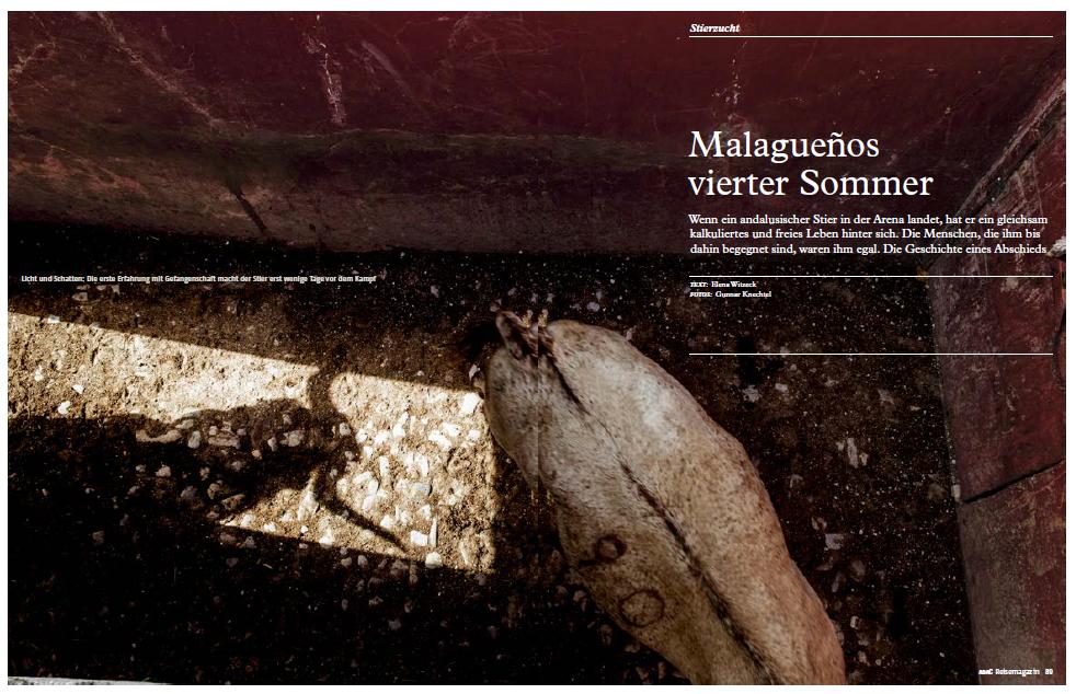 Malagueno Shot.PNG