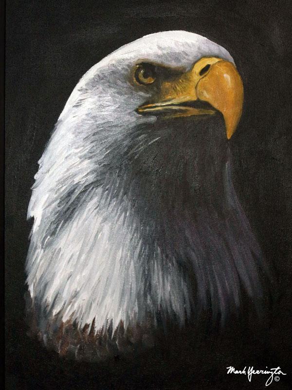 12x16 Eagle head.jpg