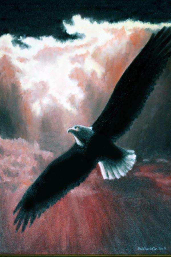 12x18 on eagles wings.jpg