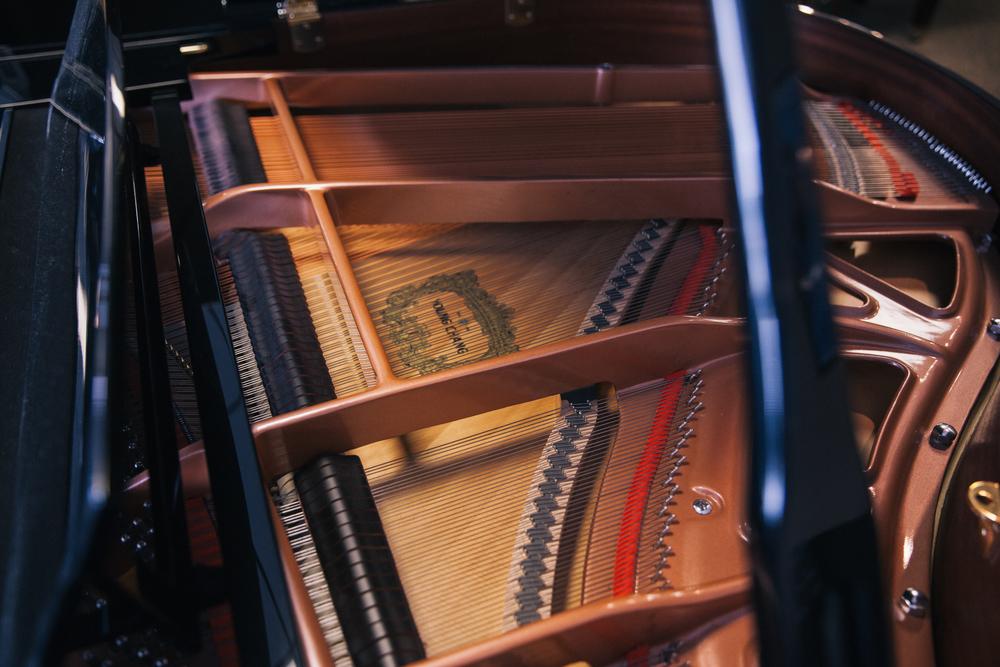 <span>Grand</span> Pianos Guide