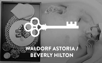 Client_WALDORF_HILTON.jpg