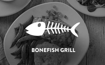 Client_BONEFISH-GRILL.jpg
